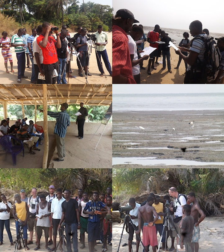 Community waterbird training workshop, Tissana, Sierra Leone 2014. CWSS.