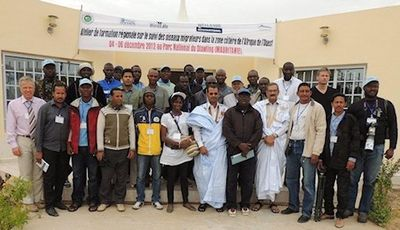 Regional Monitoring Training Course, Diawling, Mauritania, 2012. Tim Dodman.